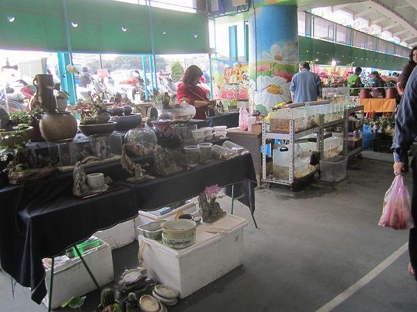 福和橋跳蚤市場フリーマーケット (43)