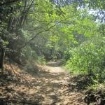 【香川】さぬき市『みろく自然公園』は自然がいっぱい!