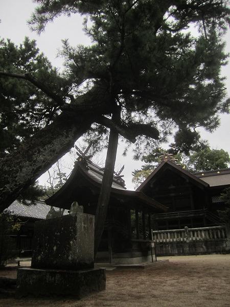 白鳥神社 (27)