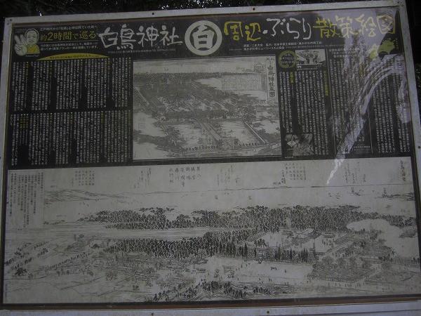 白鳥神社 (11)