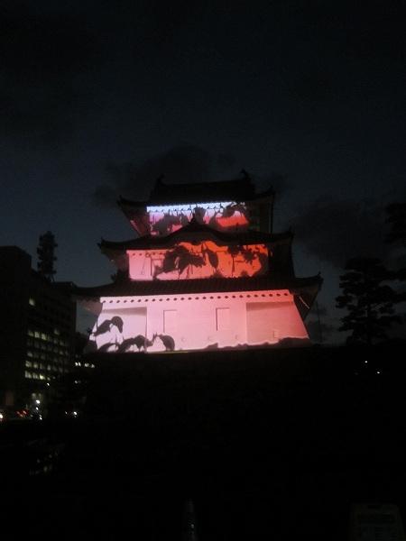 夜の玉藻公園 (5)