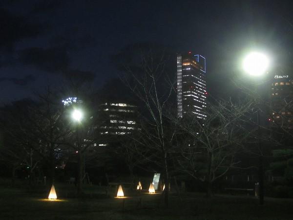 夜の玉藻公園 (11)
