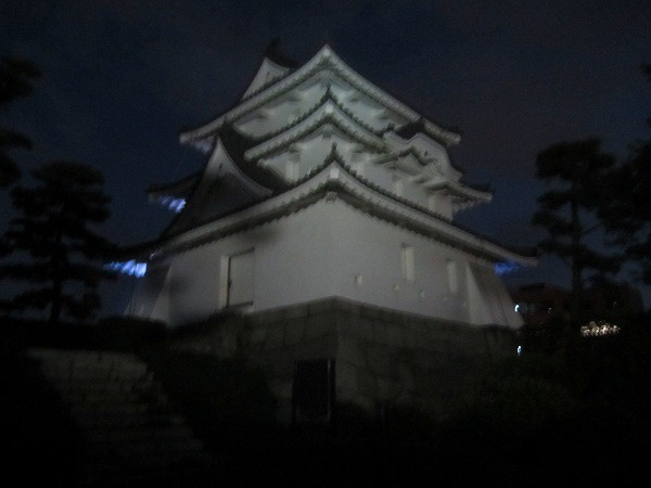 夜の玉藻公園 (8)