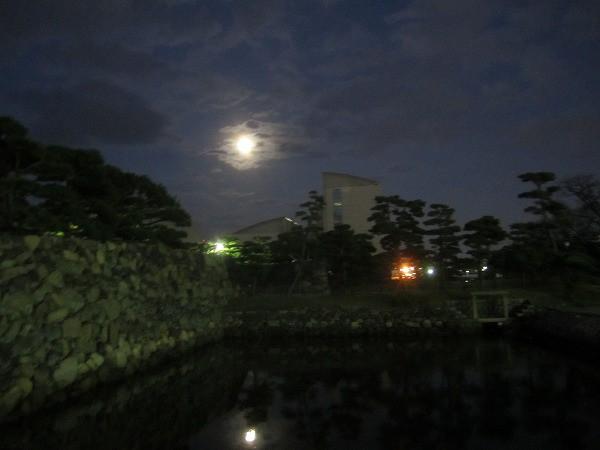 夜の玉藻公園 (15)