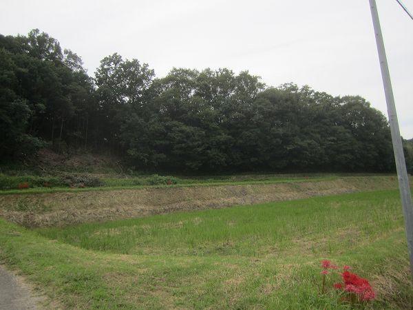 南川自然の家 (4)