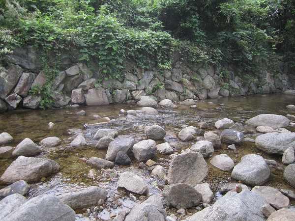 南川自然の家 (7)